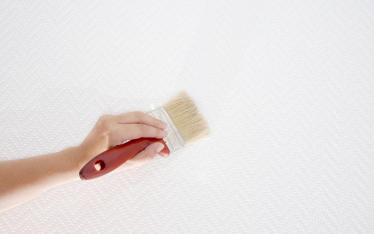 Idee per pitturare le pareti for Idee per pitturare pareti